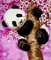 """Картина по номерам """"Панда"""" 50*40"""