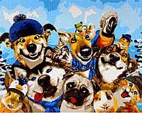 "Картина по номерам ""Собаки"" 50*40"