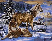 """Картина по номерам """"Волки"""" 50*40"""
