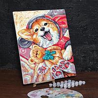 Картина по номерам на холсте с подрамником «Корги с игрушкой» 40х50 см