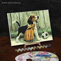 Картина по номерам на холсте с подрамником «Щенок с мячом», 40х30 см