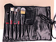 Маленький набор профессиональных кистей для макияжа, фото 2