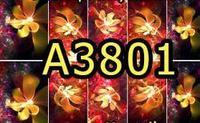A3801 Фотодизайн - Цветение в вакууме