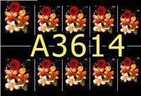 A3614 Фотодизайн -Алые бутоны на черном
