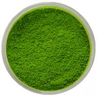 CL-01 Пигмент зеленый-травяной 2 гр.