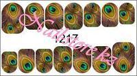 1217 Слайдер-дизайн PFN