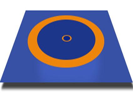 Борцовский ковер (без матов), трехцветный 10,6х10,6м (новый стандарт)