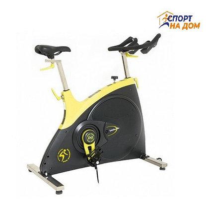 Велотренажер Spine Bike ZX 601 до 150 кг, фото 2