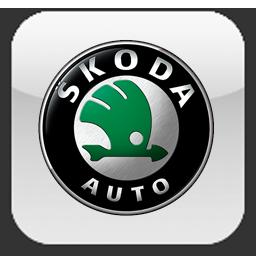 Автомагнитолы Skoda