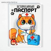 Обложка на ветеринарный паспорт «Доктор Кот»