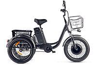 Трицикл Eltreco Porter Fat 500 UP