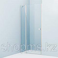 Душевые двери Ray RAY6CP0i69 IDDIS, глянцевый ал. проф. (1000*1950)