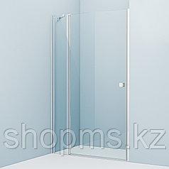 Душевые двери Ray RAY6CP2i69 IDDIS, глянцевый ал. проф. (1200*1950)