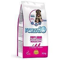 Forza 10 Puppy Junior Medium/Large Maintenance Сухой корм для щенков средних и крупных пород из рыбы 15кг