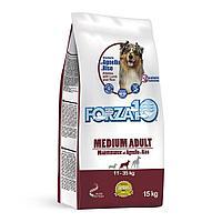 Forza 10 Maintenance Agnello/Riso Medium/Large Корм для собак средних и крупных пород (ягнёнок и рис) 15 кг