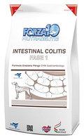 Forza10 Intestinal Colitis Fase 1 (рыба) корм для собак, страдающих колитами 10 кг