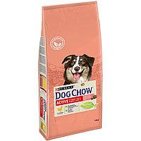 Dog Chow Сухой корм Purina Dog Chow для активных взрослых собак, курица, пакет, 14 кг