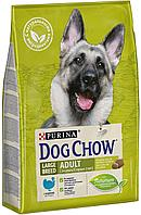 Dog Chow Сухой корм Purina Dog Chow для взрослых собак крупных пород, индейка, пакет, 14 кг