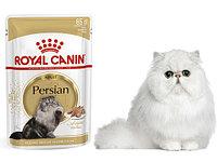 Royal Canin PERSIAN Влажный корм для кошек персидской породы12*85
