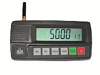 Пульт управления (индикатор) для крановых весов ЕК-СМ (Масса-К)