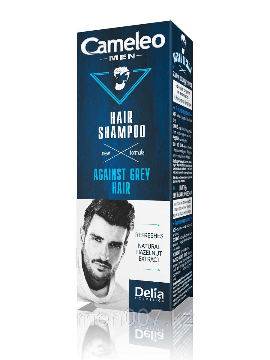 Cameleo men (Шампунь для волос, от седины)