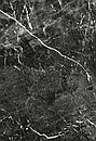 Кафель | Плитка настенная 28х40 Помпей | Pompei, фото 5
