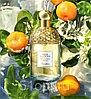 Парфюм Guerlain Aqua Allegoria Mandarine-Basilic