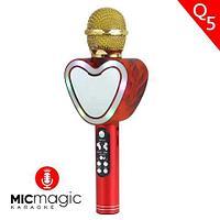 Караоке-микрофон беспроводной Micmagic Q5 с функцией записи голоса и цветомузыкой (Красный)
