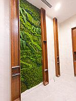 Вертикальное озеленение искусственным мхом с добавлением натурально мха