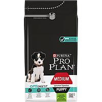 Pro Plan Medium Puppy с ягненком и рисом, уп.12 кг.