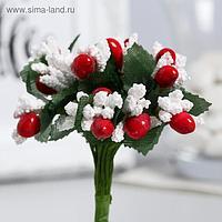 """Декор для творчества """"Зимние цветы""""МИКС 10 см (1 набор=1 букету) в букете 12 цветов"""