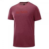 Salomon футболка мужская Agile graphic