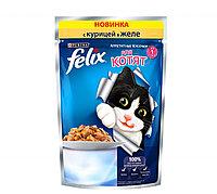 Felix с курицей в желе для котят, аппетитные кусочки