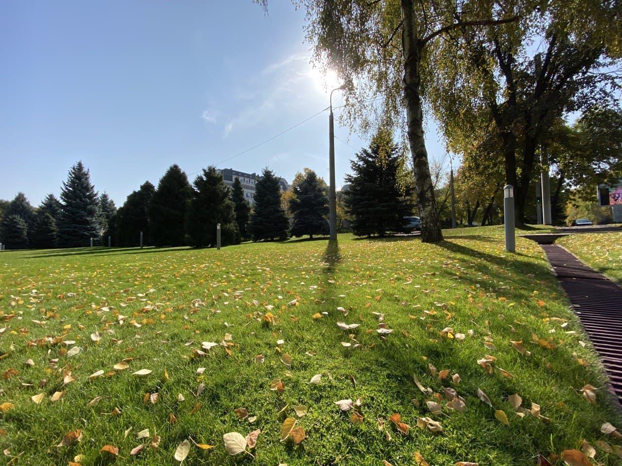 Укладка газона, озеленение, ландшафтный дизайн, поливная система - фото 5