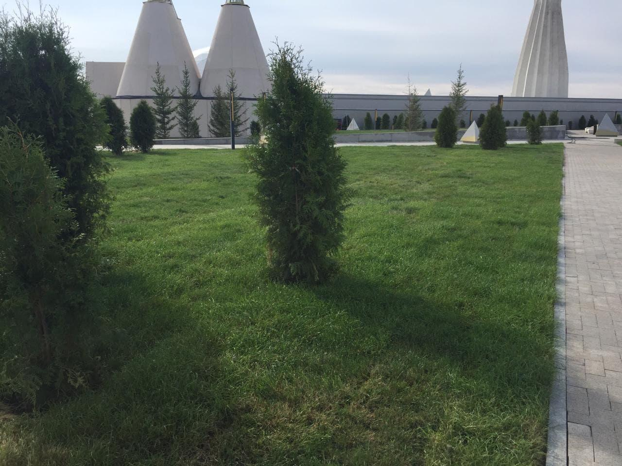 Укладка газона, озеленение, ландшафтный дизайн, поливная система - фото 6