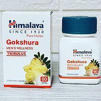 Гокшура (Gokshura Himalaya) - здоровье почек, для мочеполовой системы мужчин и женщин, 60 табл