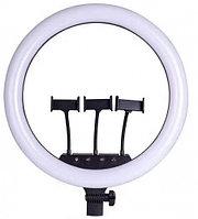 Кольцевая светодиодная лампа LED M18 (45 см) с 3 держателями + штатив + сумка для транспортировки