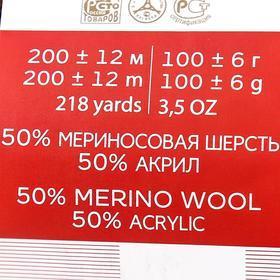 Пряжа 'Мериносовая' 50меринос.шерсть, 50 акрил 200м/100гр (251-Коричневый) - фото 7