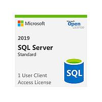 Операционная система Microsoft SQLCAL 2019 SNGL OLP NL UsrCAL 359-06866 (Windows Server 2019)