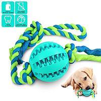 Игрушка для собак Апортировка с мячом