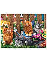 Пазл 500 эл. Котята Мейн-кун Ф500-5143 Рыжий Кот