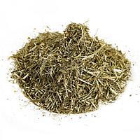 Желтушник трава 100 гр АЛТАЙ