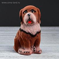 "Копилка ""Собака Бетховен"", флок, коричневый цвет, 18 см"