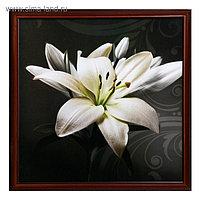 """Картина """"Белая лилия"""" 75*75 см"""