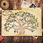 """Подарочный набор """"Родословная книга нашей семьи"""" с пером и чернильницей, фото 7"""