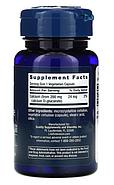 Life Extension, D-глюкарат кальция, 200 мг, 60 растительных капсул, фото 2
