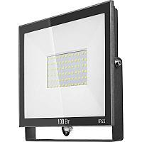 Прожектор 61 948 OFL-100-6K-BL-IP65-LED ОНЛАЙТ 61948