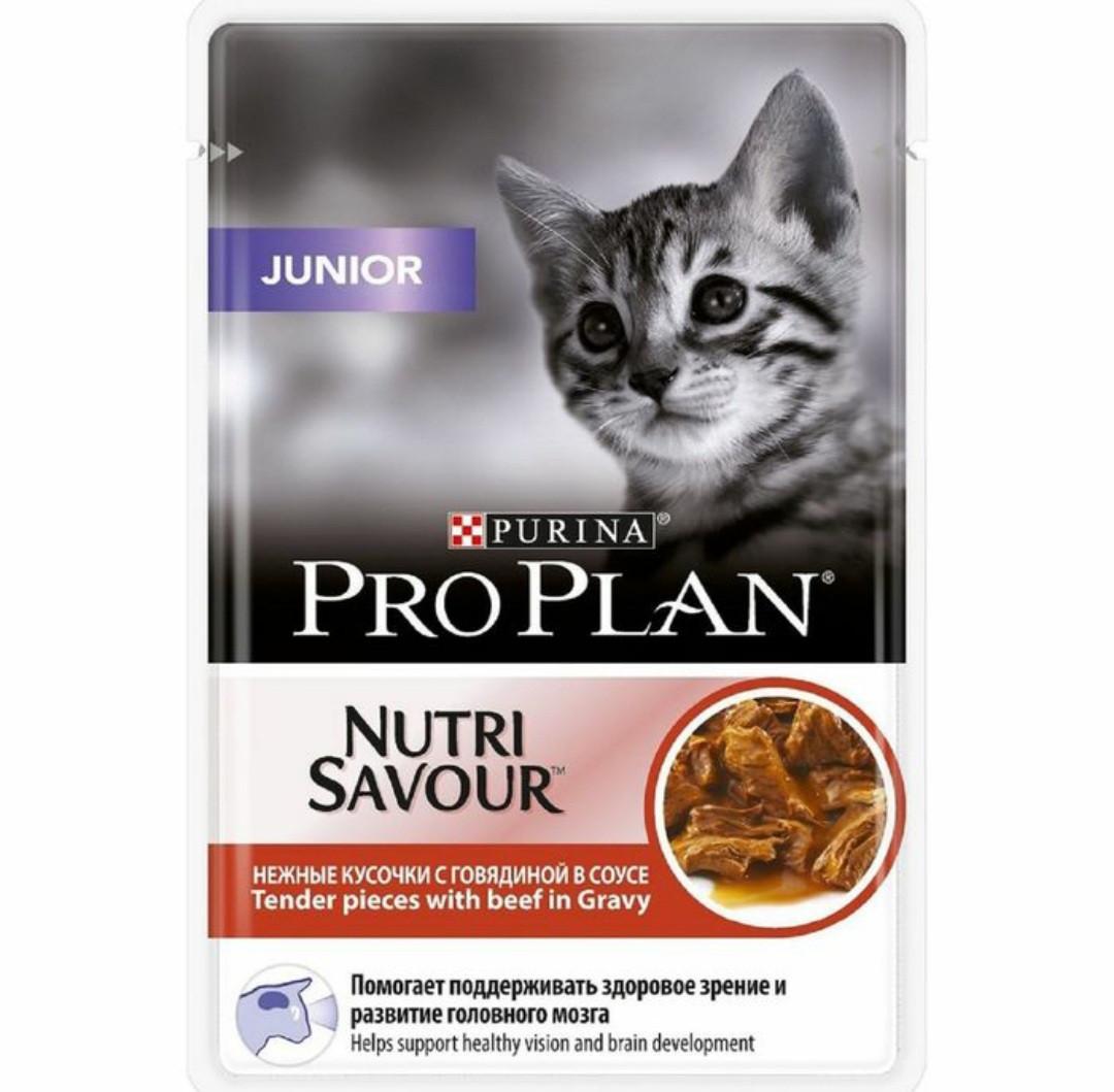 Влажный корм для котят ПроПлан Говядина в соусе