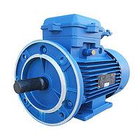 Электродвигатель общепромышленный с тормозом 5АИ 250 S4 ЕТ (ЕТ1)