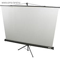 Экран Lumien 160x160 Eco View LEV-100105 1:1, напольный, рулонный